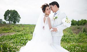 树木花丛外景风光婚纱摄影高清原片