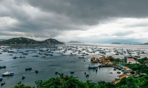 海边繁华的海港景观摄影图片