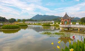 美丽的园林和湖泊景观摄影图片