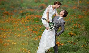 鲜花草丛外景风光摄影高清原片素材
