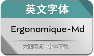 Ergonomique-Medium(Ӣ������)