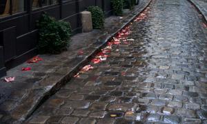 雨后的小巷铺石路风景摄影高清图片
