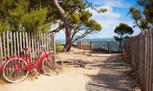 靠着栅栏的一辆红色自行车高清图片