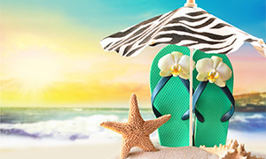 遮阳伞下的凉鞋与海星摄影高清图片