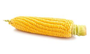 一颗剥去外衣的甜玉米特写高清图片