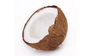 破壳后的半个椰子特写摄影高清图片
