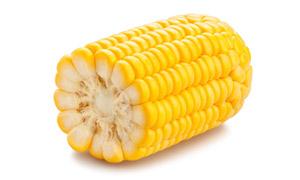 处理干净的优质甜玉米摄影高清图片