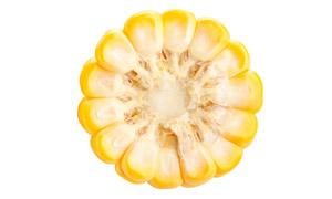 优选甜玉米横切面特写摄影高清图片