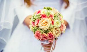 手中玫瑰组合捧花特写摄影高清图片