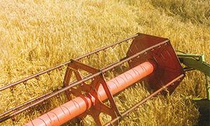 收获季节麦田里的农业机械高清图片