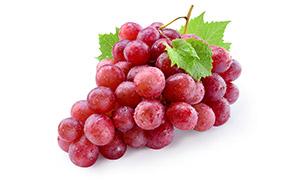 一串挂着小水珠的葡萄摄影高清图片