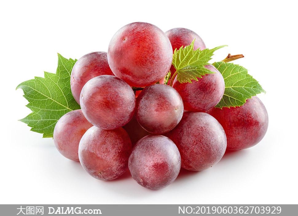 表面有层霜膜的红葡萄摄影高清图片