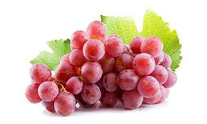 红色新鲜葡萄近景特写摄影高清图片