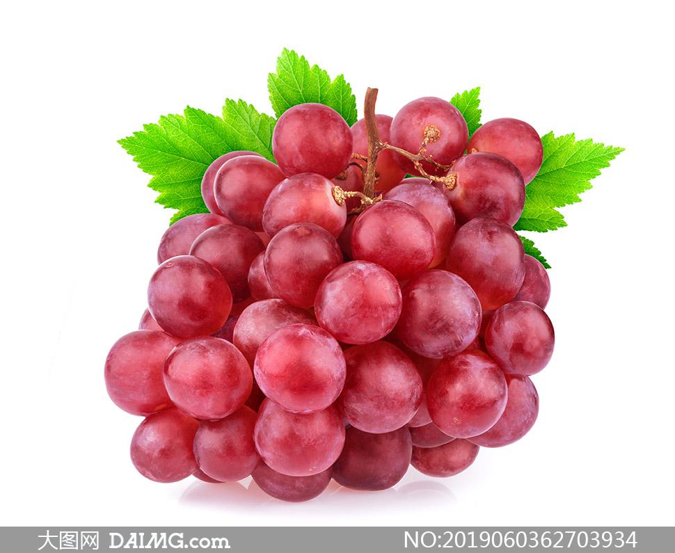 个头平均大小的红葡萄摄影高清图片
