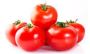 圆圆的精品西红柿特写摄影高清图片