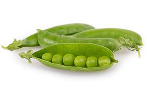 豆荚里籽粒饱满的豌豆摄影高清图片