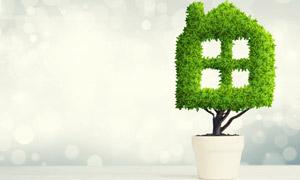 房屋形状盆栽环保主题创意高清图片