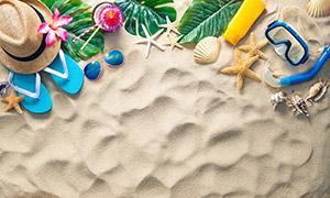 鲜花绿叶与帽子海星等特写高清图片