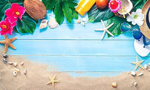 木板上的沙子与花朵海星等高清图片