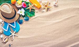 鲜花海星与凉鞋墨镜等摄影高清图片