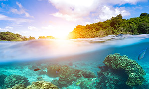 蓝天白云与海水下的珊瑚礁高清图片