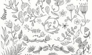 春季主题树叶和藤蔓PS笔刷