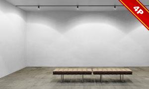 展览画廊墙壁上艺术品展示效果模板