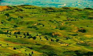 山间壮观的农田景观摄影图片