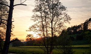 河边树木倒影美景摄影图片