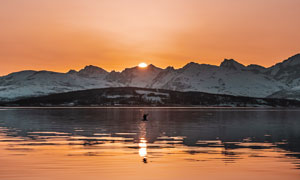 美丽的湖泊夕阳美景高清摄影图片