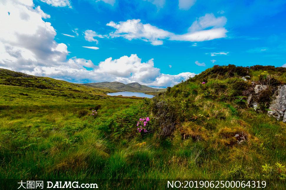 藍天下的綠色草地和湖泊攝影圖片