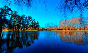 秋季湖泊倒影和樹木攝影圖片
