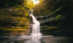 林中小溪瀑布摄影图片