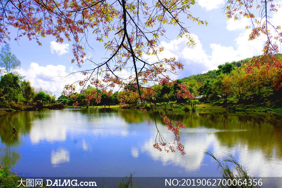 公园中静谧的湖泊美景摄影图片