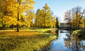 秋季公园树林和小河流摄影图片