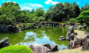 公园中的池塘和树林摄影图片