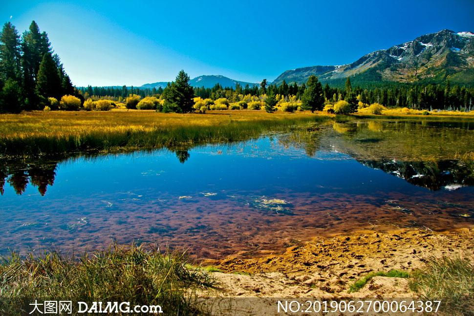 蓝天下的湖边风光摄影图片