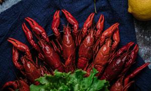香辣小龙虾食材摄影图片