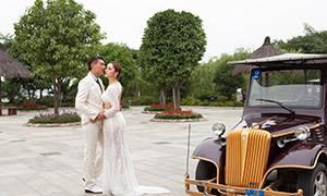 树木观光车背景婚纱照摄影高清原片