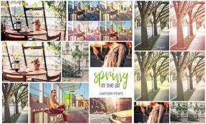 春季主题照片复古艺术效果LR预设