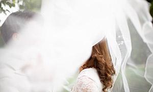 头纱下的幸福恋人婚纱摄影高清原片