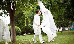 树木草地外景婚纱主题摄影高清原片