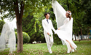 草地上的白色婚纱礼物恋人高清原片