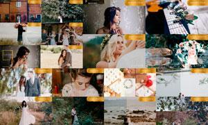 LAVISH系列欧美婚礼照片调色LR预设