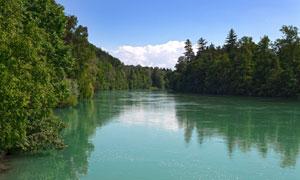 蓝天白云树木与平静的水面高清图片