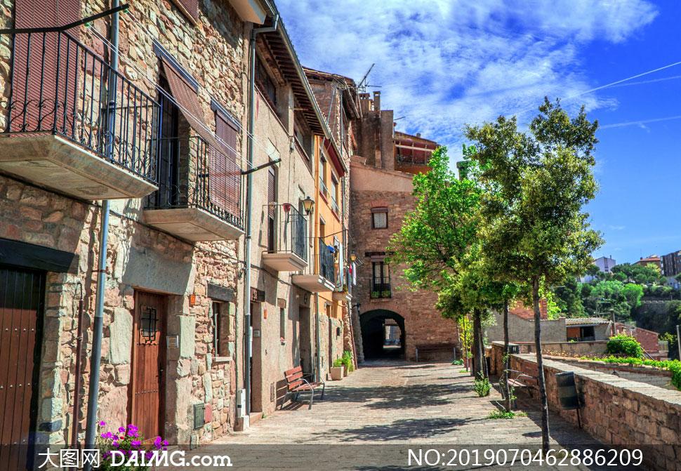 门前有树木的房子建筑摄影高清图片