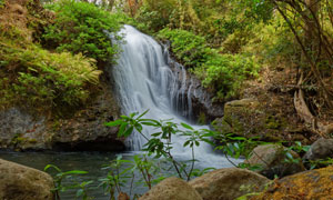在山间流淌的瀑布美景摄影高清图片