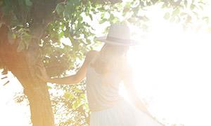 站在大树下的美女背影逆光摄影原片