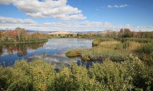 新疆田园美丽风光摄影图片
