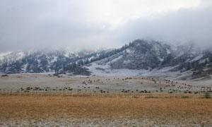 云雾下的新疆美景摄影图片